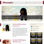 template-wordpress-titaniumifize-post