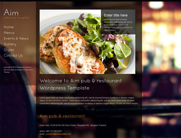 Aim - Pub and Restaurant WordPress Template