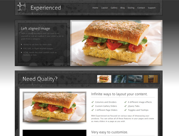 Experience WordPress Theme