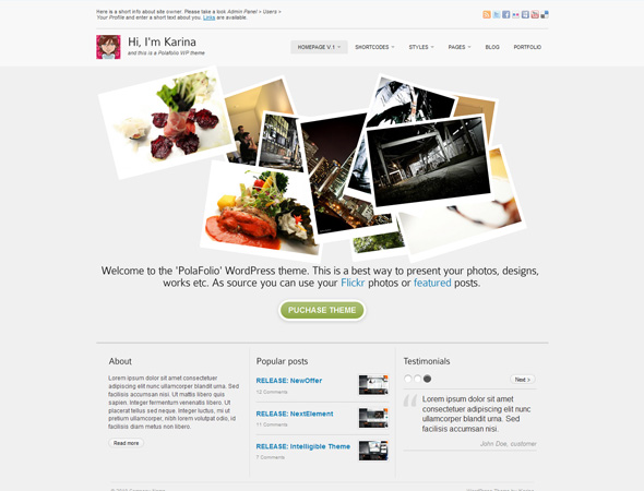 Polafolio 7-in-1 Personal and Business theme