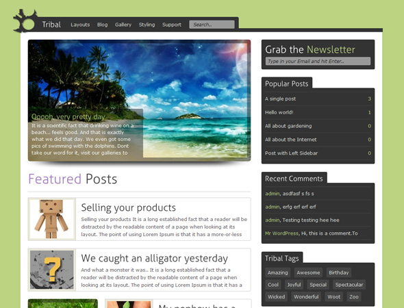 Tribal - WordPress Theme