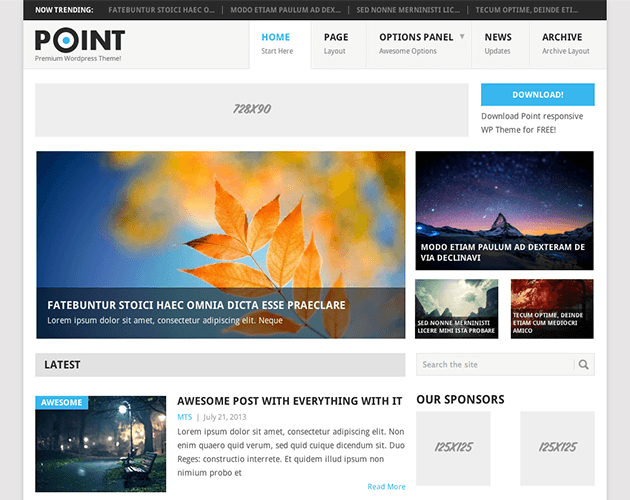 Point WordPress Theme