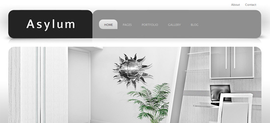 Asylum - Premium WordPress theme
