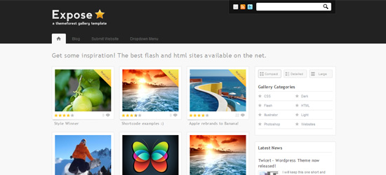 Expose Gallery WordPress Theme